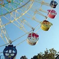 Harmonyland Ferris Wheel